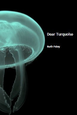 Dear Turquoise by Ruth Foley