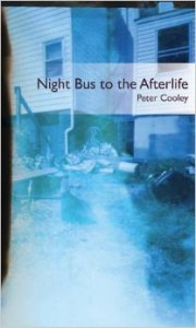 Night Bus to the Afterlife