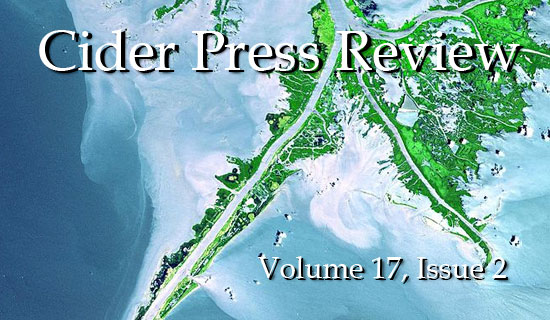 Volume 17, Issue 2 is now online