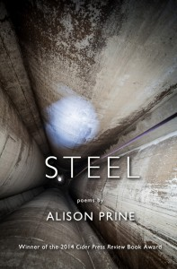 Steel, by Alison Prine