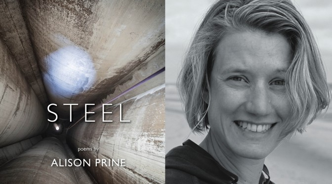 <em>Steel</em>, by Alison Prine, a finalist for Vermont Book Award