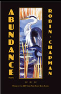 <em>Abundance</em> for your Kindle