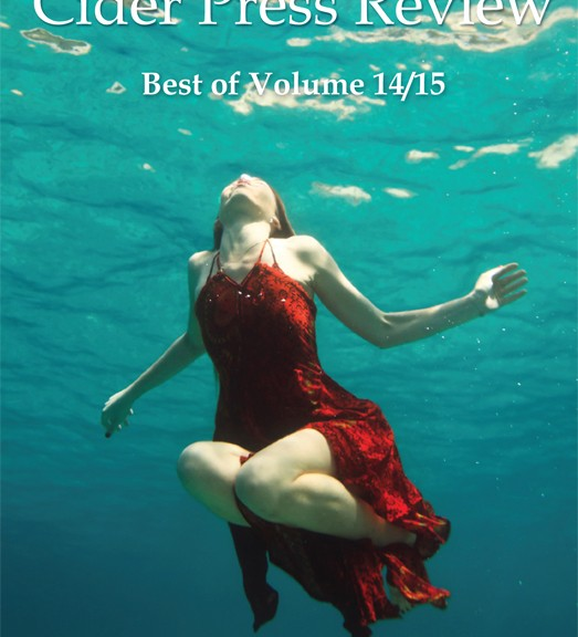 Cider Press Review Best of Volume 14/15