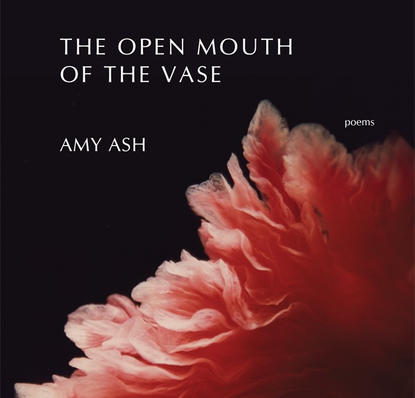 """Pain, love, regret, joy, longing, loss, humor, and an earthy sexuality all find memorable expression in these poems. Ash has a gift for reversing reader expectations in illuminating ways, as well as for coining metaphors that startle with their aptness and their ability to refresh the world. I congratulate Amy Ash on having written this book, and you, reader, for the journey you are about to make."""