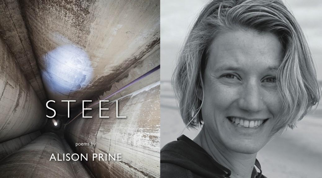 Steel by Alison Prine
