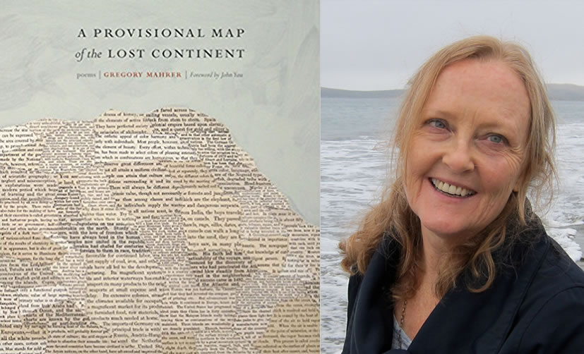 A Provisional Map of the Lost Continent, Reviewed by Gwynn O'Gara