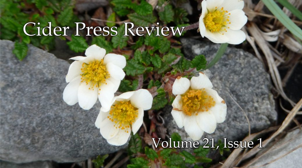 Cider Press Review Volume 21 Issue 1