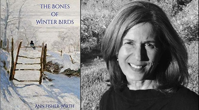 <em>The Bones of Winter Birds</em> by Ann Fisher-Wirth