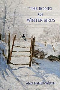 The Bones of Winter Birds