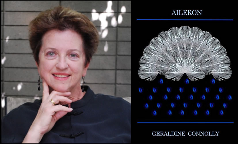 Aileron, by Geraldine Connelly